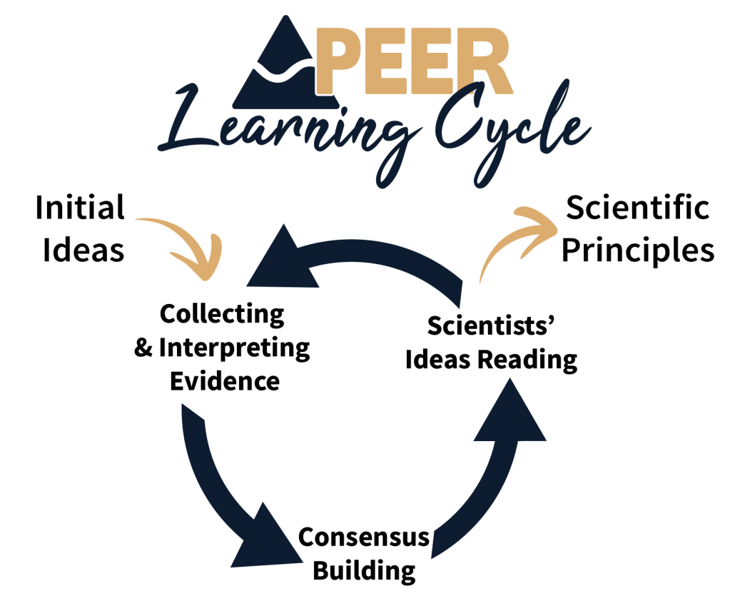 PEER Learning Cycle